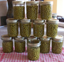 Finished Canned Peas